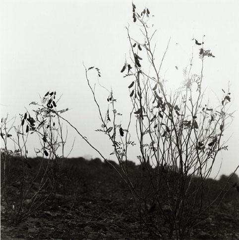 05B043-09.jpg