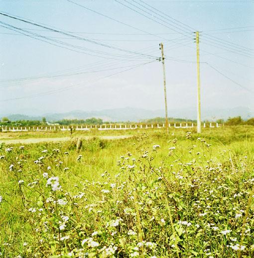 06CB014-02.jpg