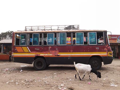 Bogra-Bus-R0128156.jpg