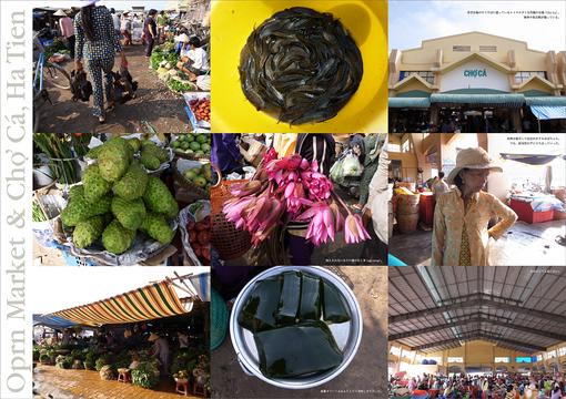 Border-HaTien-Market.jpg