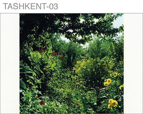 CARD-sample-TASHKENT-03.jpg