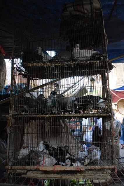 Chittagong-0818.jpg