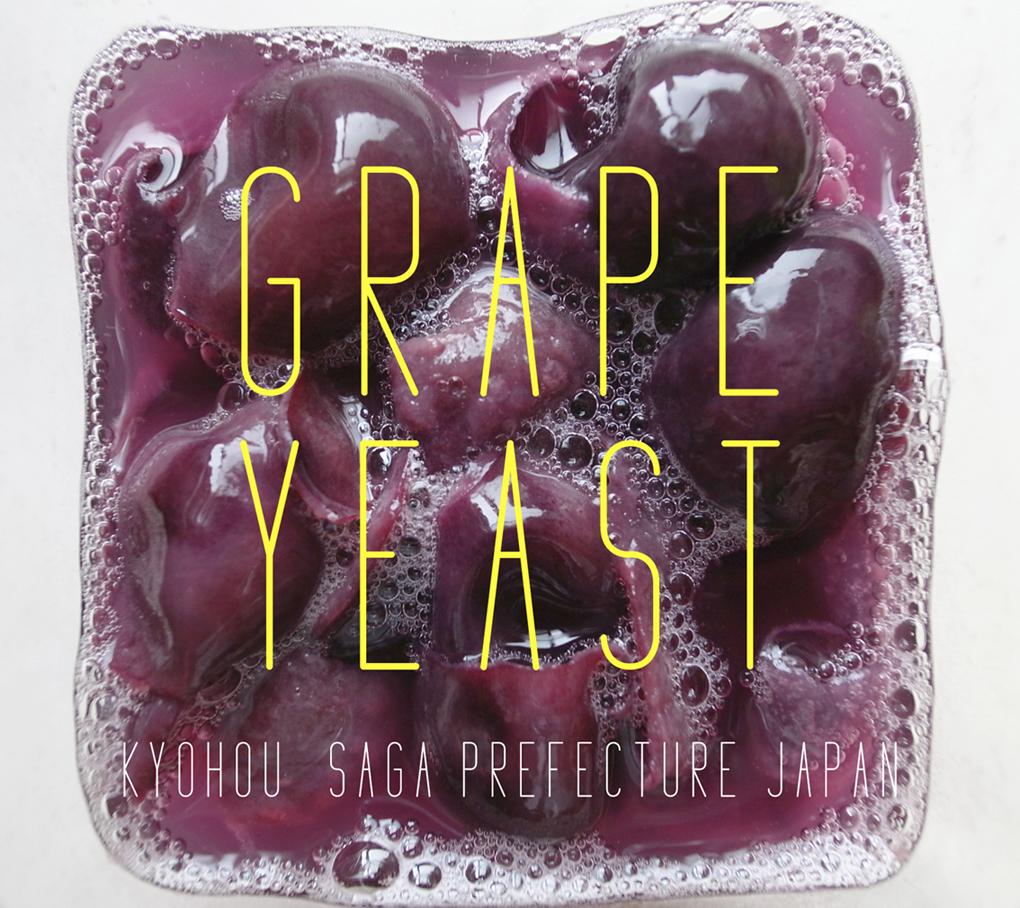 GrapeYeast-Kyohou-Saga-June-2016.jpg