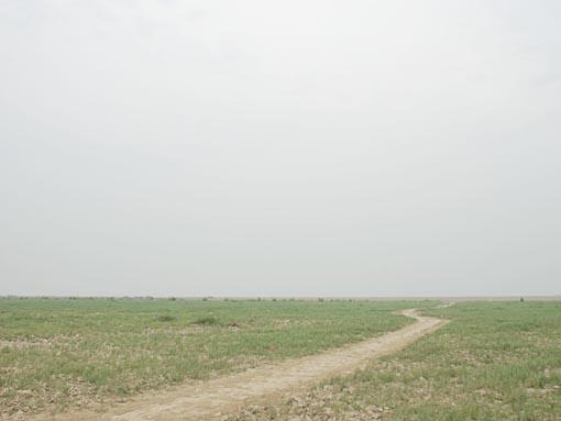 R2N-2046.jpg