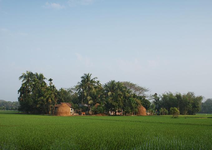 R2N-Upalpur-1794.jpg