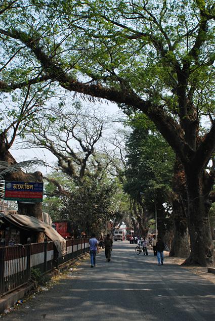 haridaspur-2564.jpg
