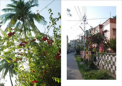 kolkata-Sodpur-2.jpg